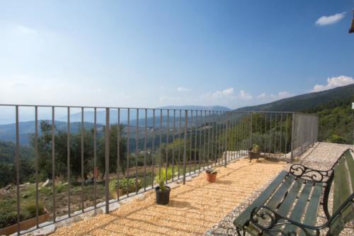 Terrazza olivo-IMG_4131