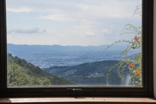 Vista Panorama_0065-56