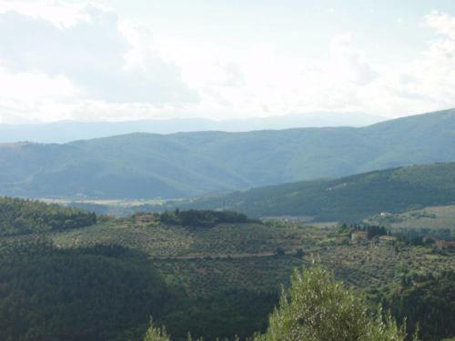panorama-1600x1200