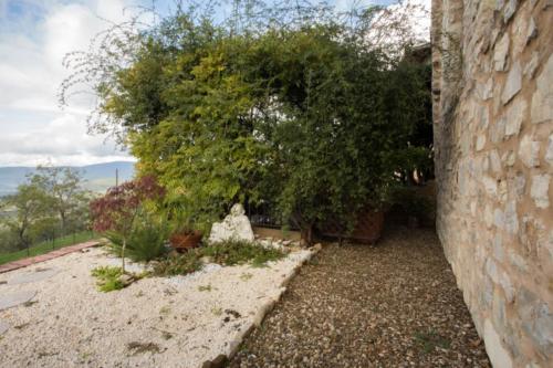 terrazza con Buddah-IMG_8304